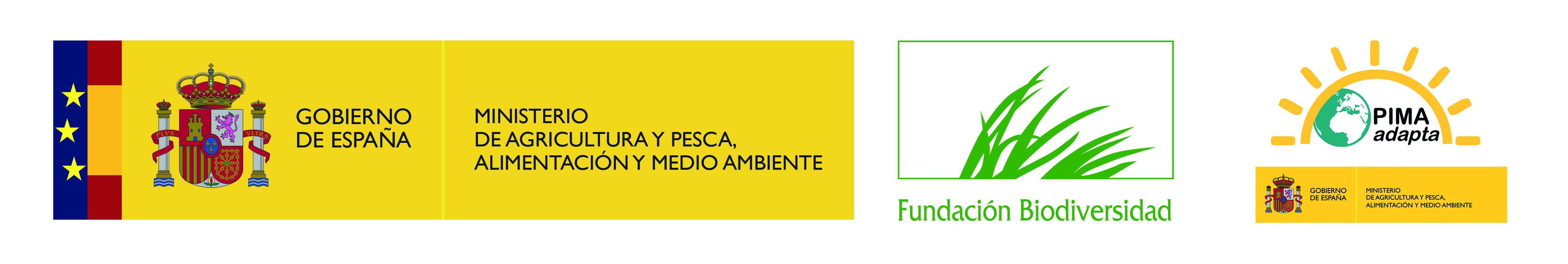 LOGO_FB_PIMA_COLOR_para_web